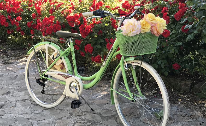 Geschmückte Fahrräder 2