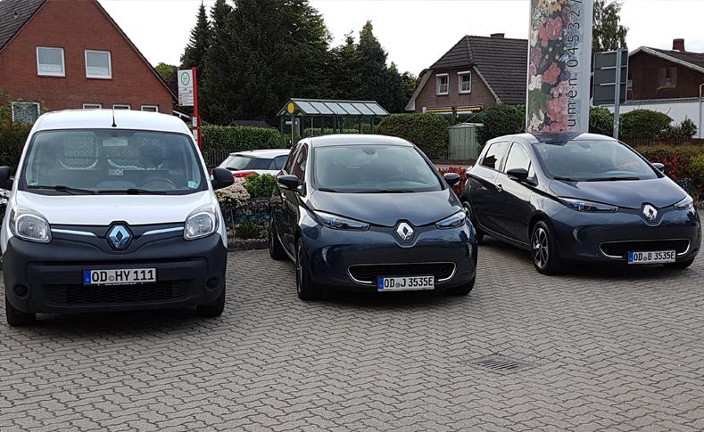 Elektroauto Flotte 1
