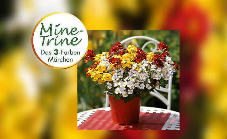 MineTrine