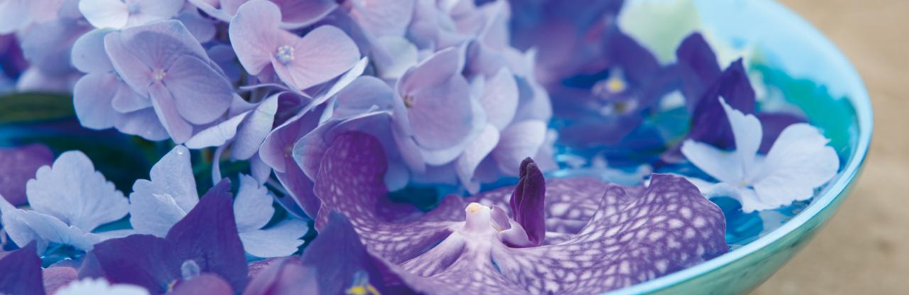 Blumenel Selber Machen selber machen blumen jentsch